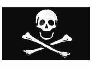 Pirate Skull Poison Flag 3 X 5 ft. Standard